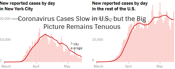 Coronavirus Cases Slow in U.S., but the Big Picture Remains Tenuous