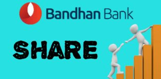 Bandhan Bank share gain
